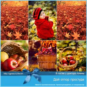 prostuda_viferon_4_15092015